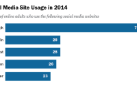 Percent of online adults who use the following social media websites