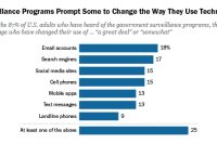 Americans' Privacy Strategies Post-Snowden