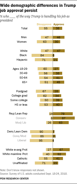 Wide demographic differences in Trump job approval persist