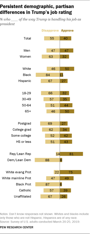 Persistent demographic, partisan differences in Trump's job rating