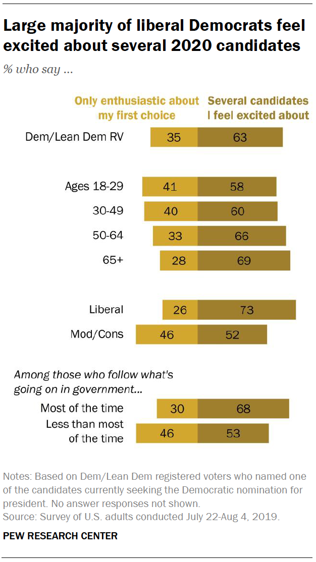 Large majority of liberal Democrats feel excited about several 2020 candidates