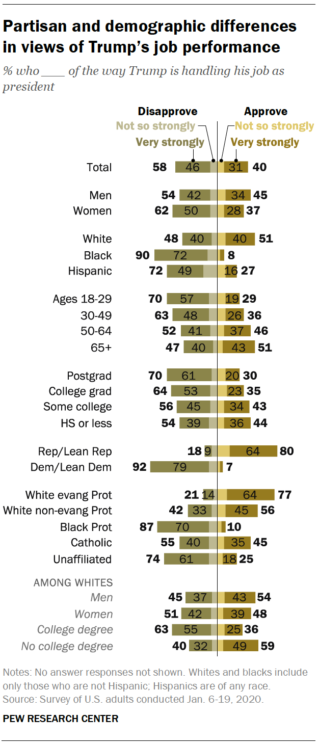 Partisan and demographic differences in views of Trump's job performance