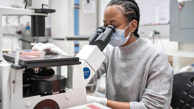 Photo shows Raychel Lewis, a cell culture technician, sets up equipment to test COVID-19 samples from recovered patients at a lab in New York City. (Misha Friedman/Getty Images)