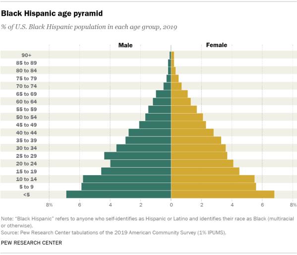 Chart showing the Black Hispanic age pyramid