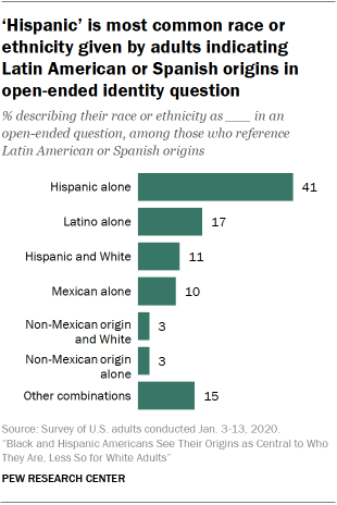 'Hispanic' is most common race or ethnicity given by adults indicating Latin American or Spanish origins in open-ended identity question