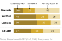 Bisexuals Less Likely to Say Sexual Orientation is Important to Their Identity