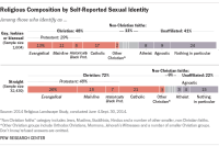 Religious Composition by Self-Reported Sexual Identity