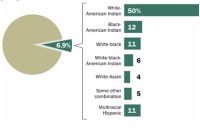 White and American Indian Biracial Adults are the Largest Multiracial Groups