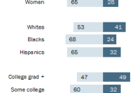 Views on Safety of GMOs by Key Demographics
