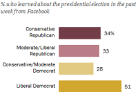 Liberal Democrats most likely to have learned about the 2016 election from Facebook
