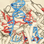 Many Americans are wary of using gene editing for human enhancement