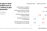 Partisan gap in views of concealed carry is among widest on gun policy proposals