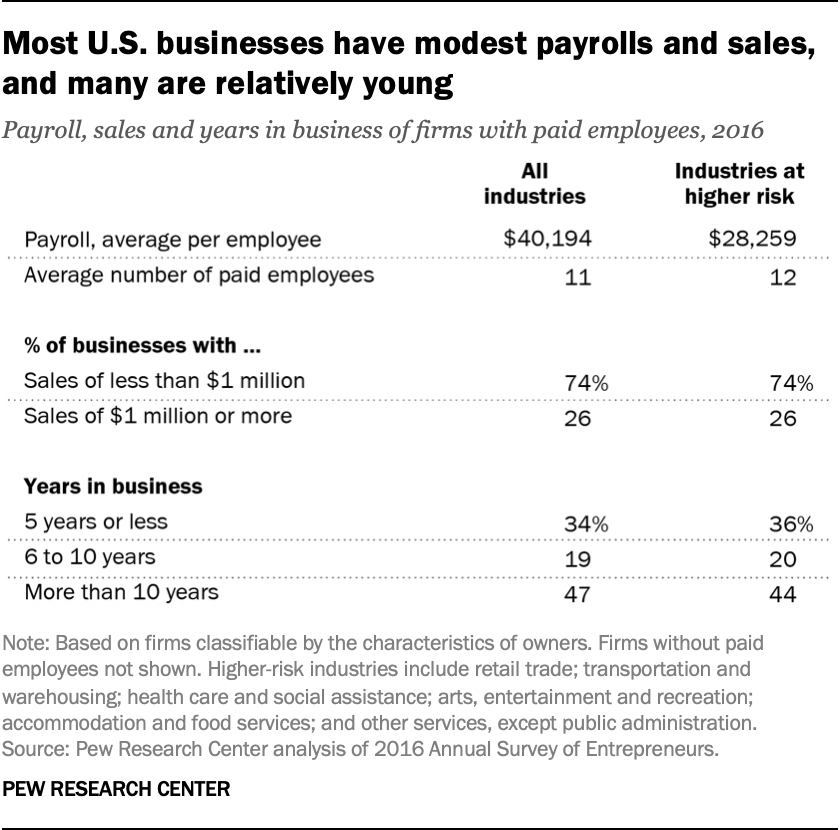 Most U.S. businesses have modest payrolls and sales, and many are relatively young