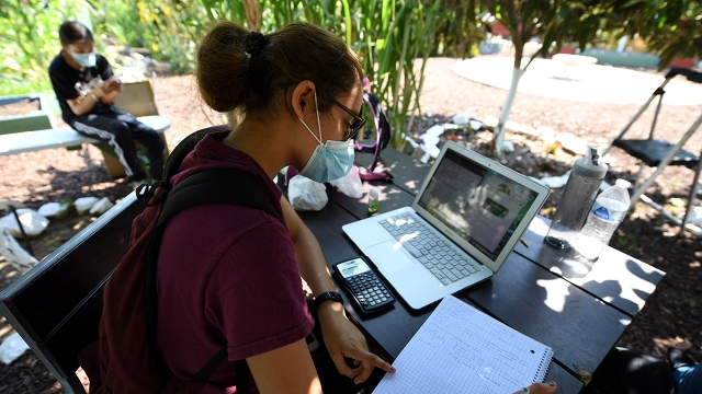 High school senior Jocelyn Hernandez follows a remote class while sitting in a community garden near her home on Aug. 14, 2020, in Los Angeles. (Robyn Beck/AFP via Getty Images)