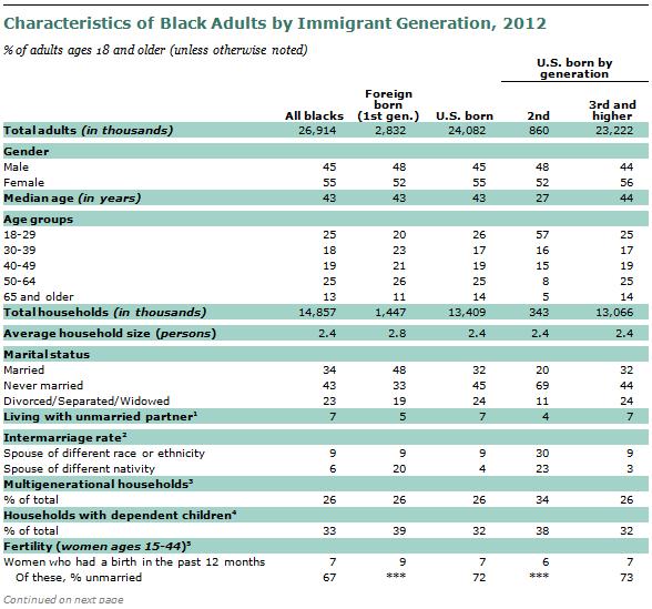 SDT-2013-02-07-Immigrant-Gen-A1-08