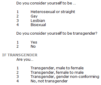 Sexual orientation questions