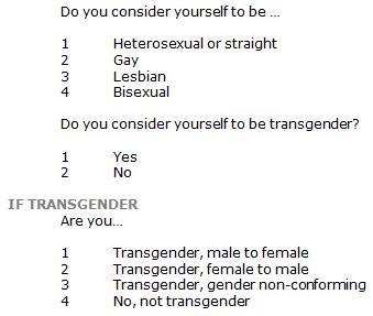SDT-2013-06-LGBT-A1-01