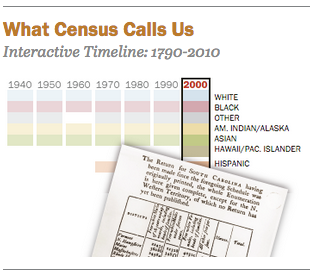 Click the image above to explore our census race categories interactive.