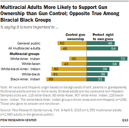 Multiracial Adults More Likely to Support Gun Ownership than Gun Control; Opposite True Among Biracial Black Groups