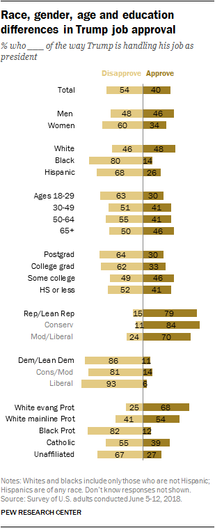 Race, gender, age and education differences in Trump job approval