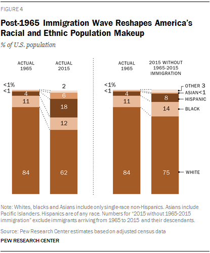 Post-1965 Immigration Wave Reshapes America's Racial and Ethnic Population Makeup