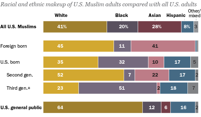 Muslim Americans: Immigrants and U S  born see life